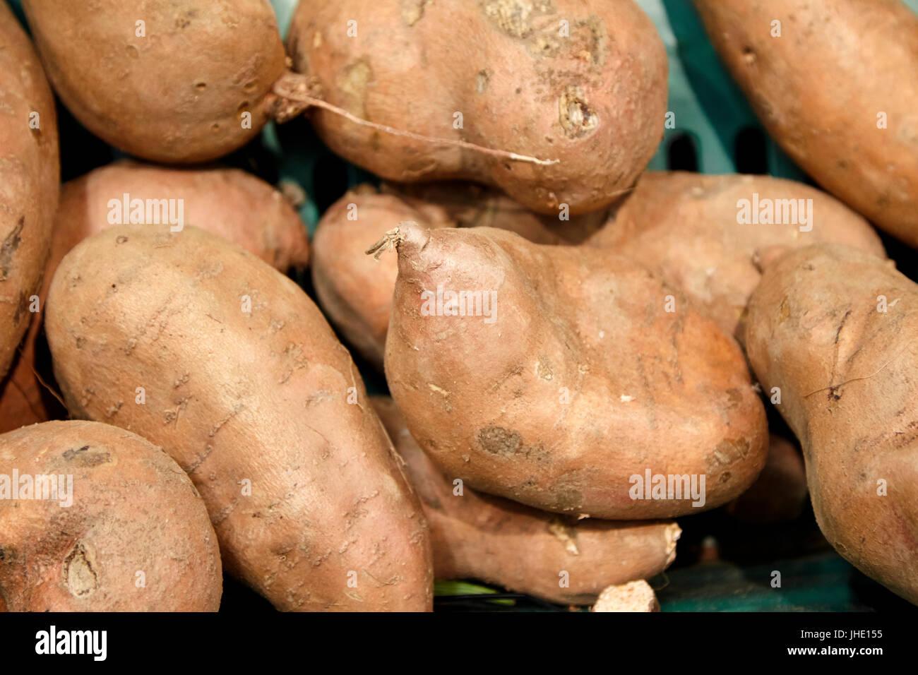 fresh sweet potatoes - Stock Image