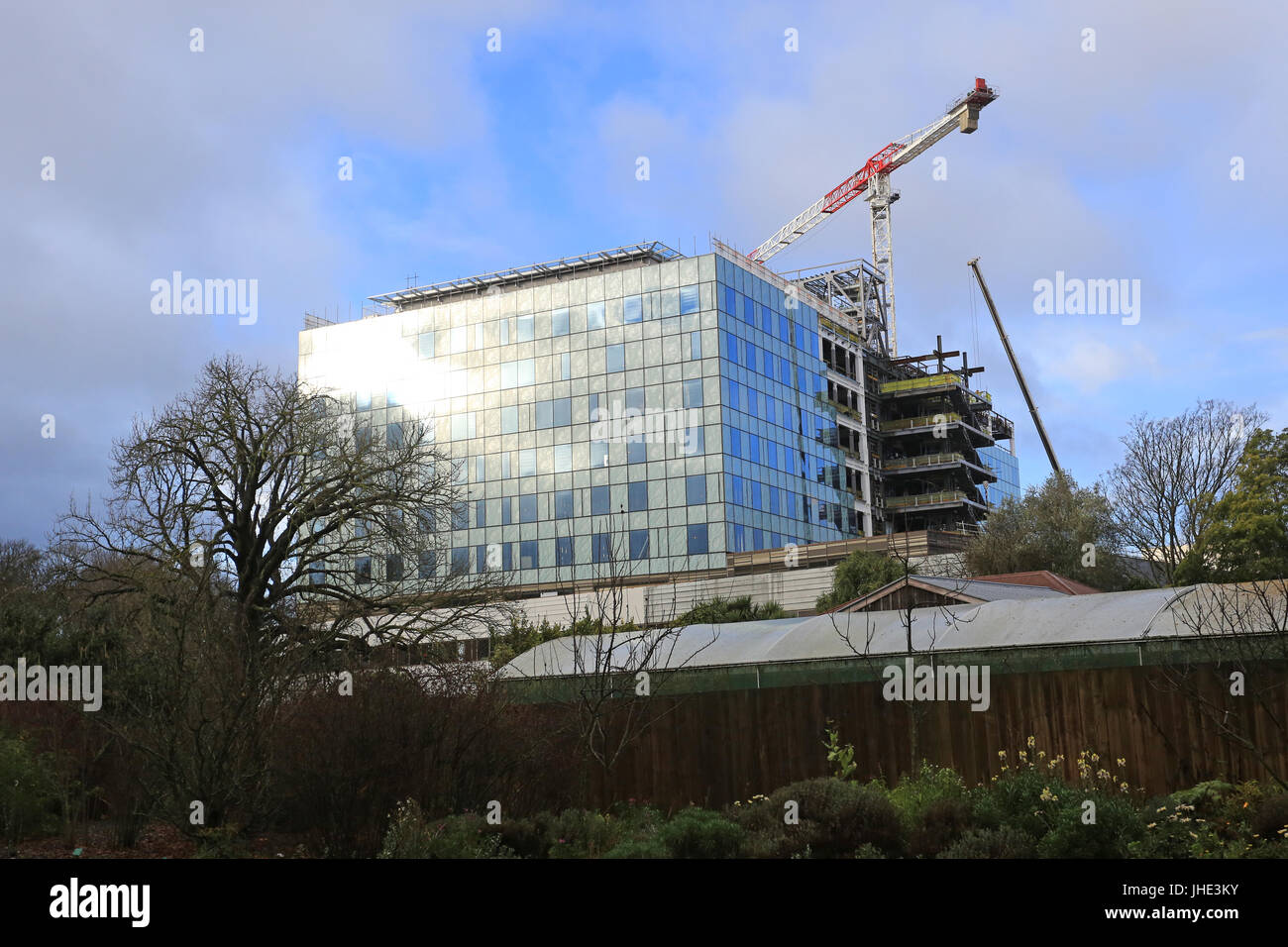 Acute Services Building under construction - Stock Image