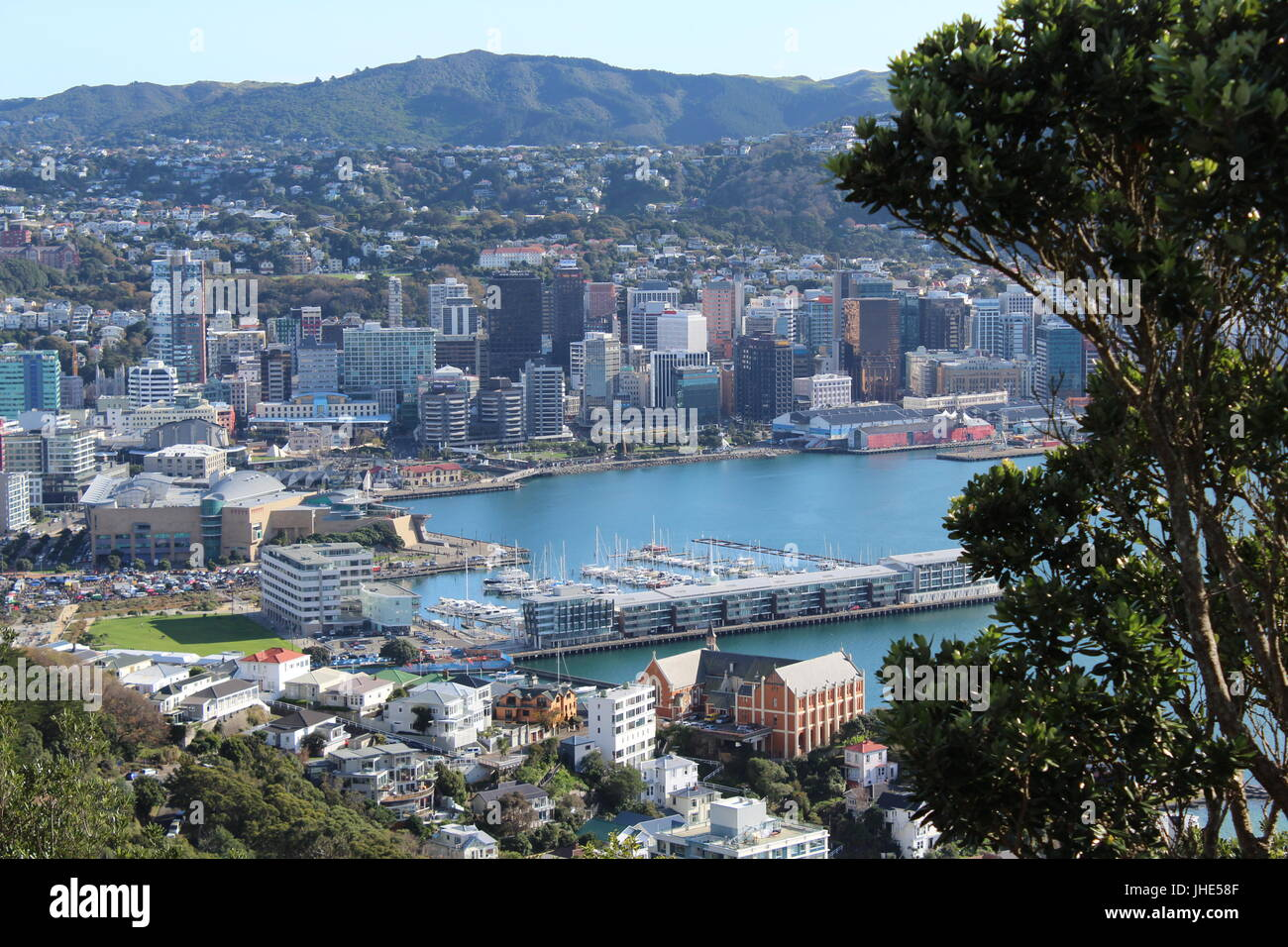 Summer in Wellington - Stock Image