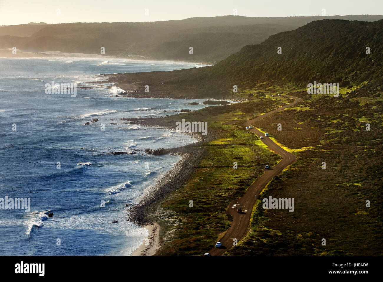 Road in Cape of Good Hope in sunset, South Africa, Western Cape, Cape of Good Hope National Park - Stock Image