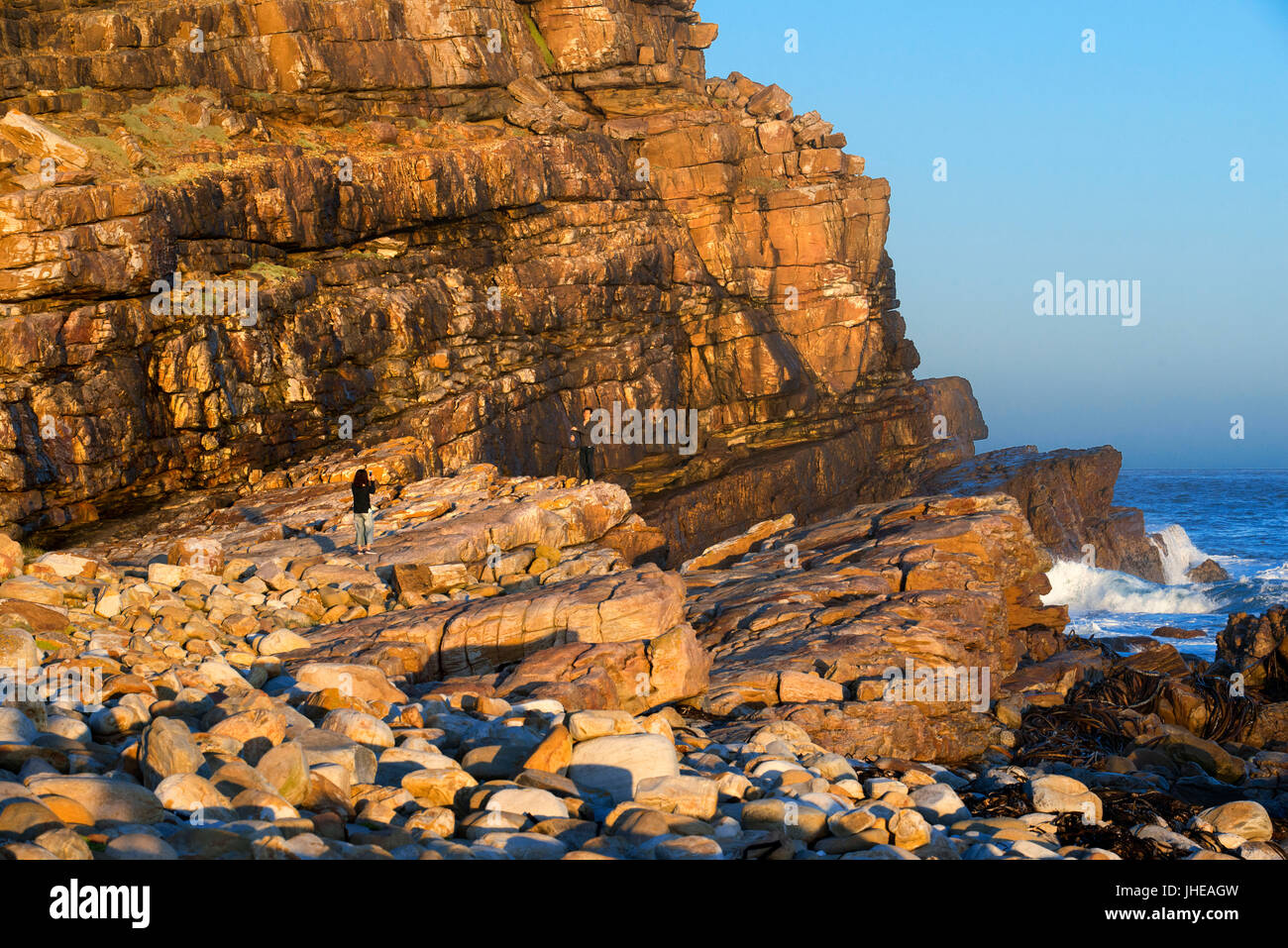 Cape of Good Hope in sunset, South Africa, Western Cape, Cape of Good Hope National Park - Stock Image