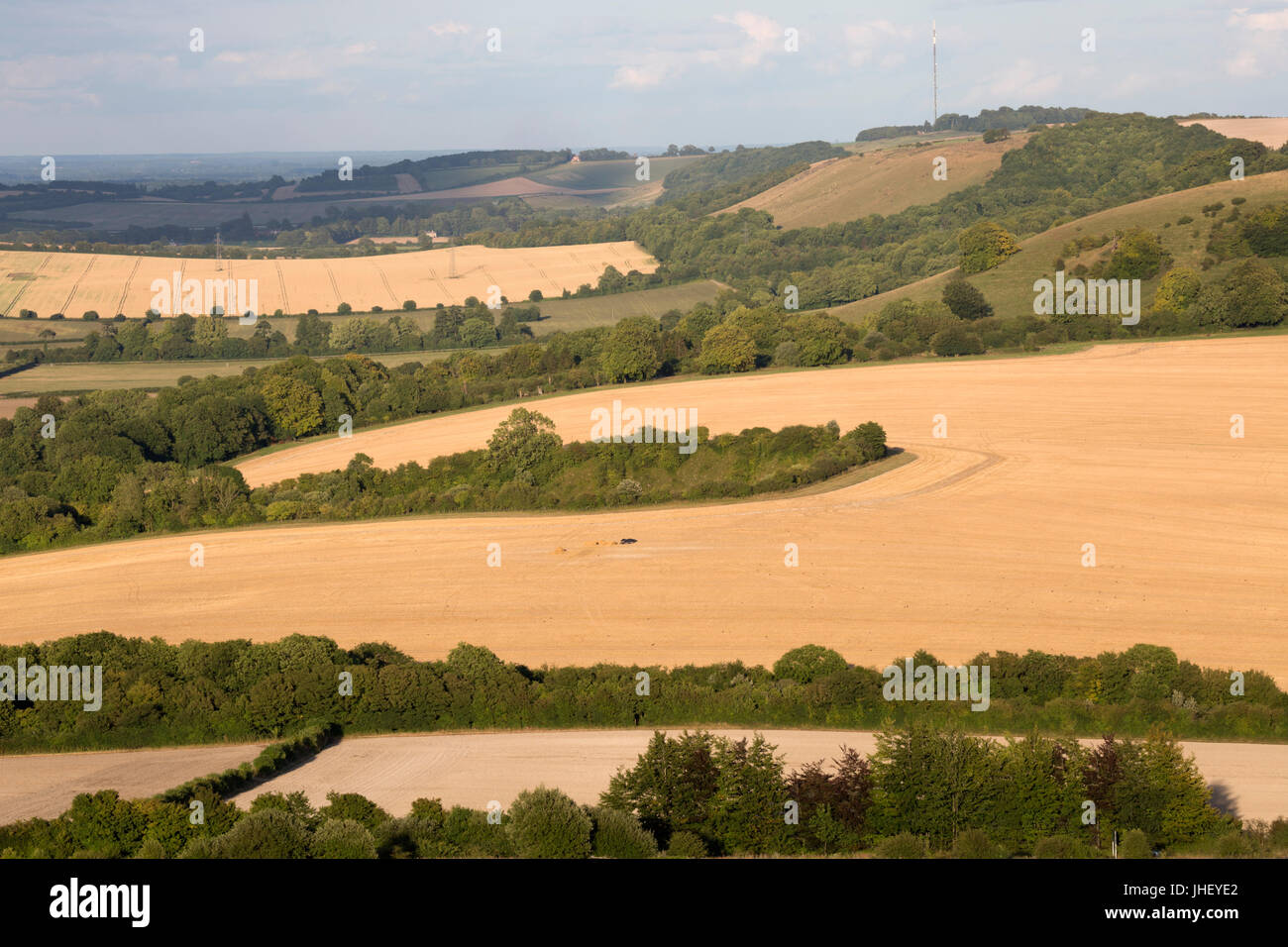 View to Hannington Hill and Watership Down from Beacon Hill with summer wheat fields, North Wessex Downs AONB, near - Stock Image