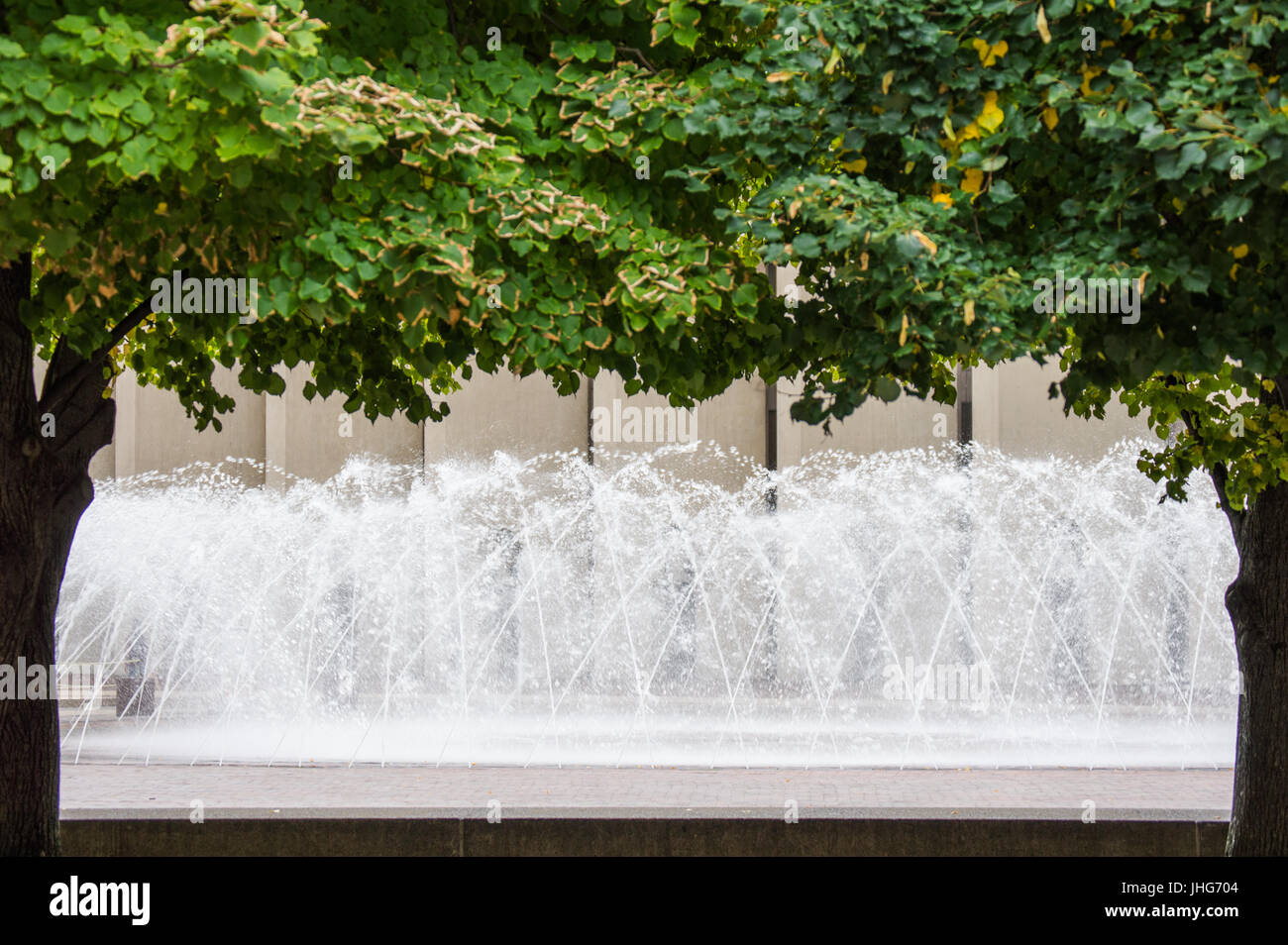 dancing water fountain framed by green trees Stock Photo: 148488820 ...