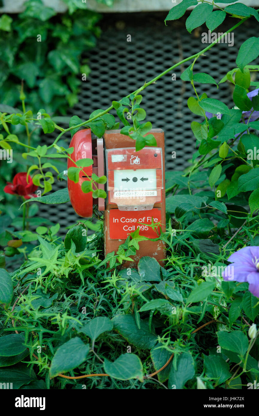 Fire Alarm nestled amongst garden plants, Flower Dome, Gardens by the Bay, Singapore Stock Photo