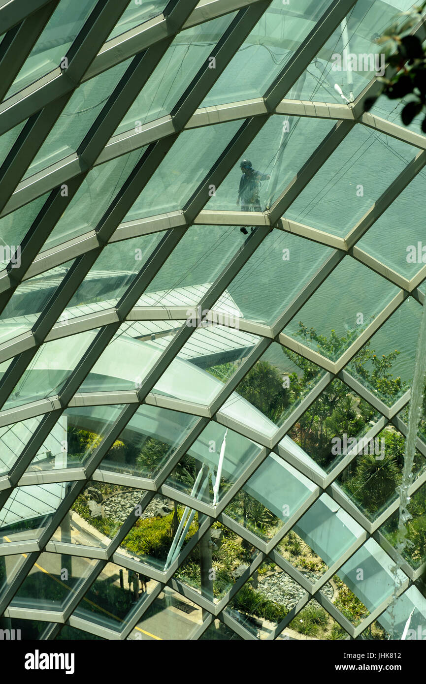 Window cleaner on outside of Cloud Forest building, Gardens by the Bay, Singapore Stock Photo