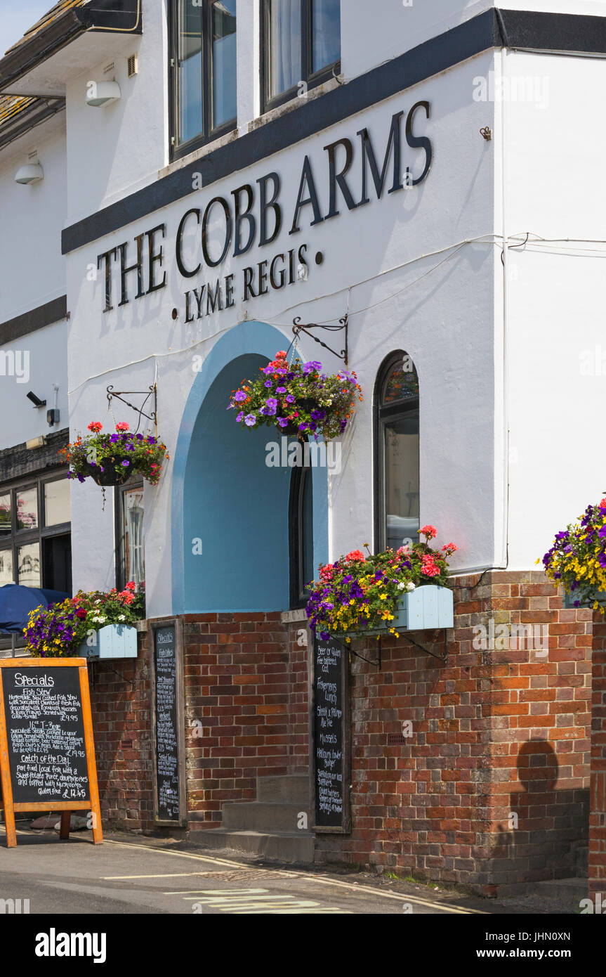 The Cobb Arms pub B&B and restaurant at Lyme Regis, Dorset in July - Stock Image
