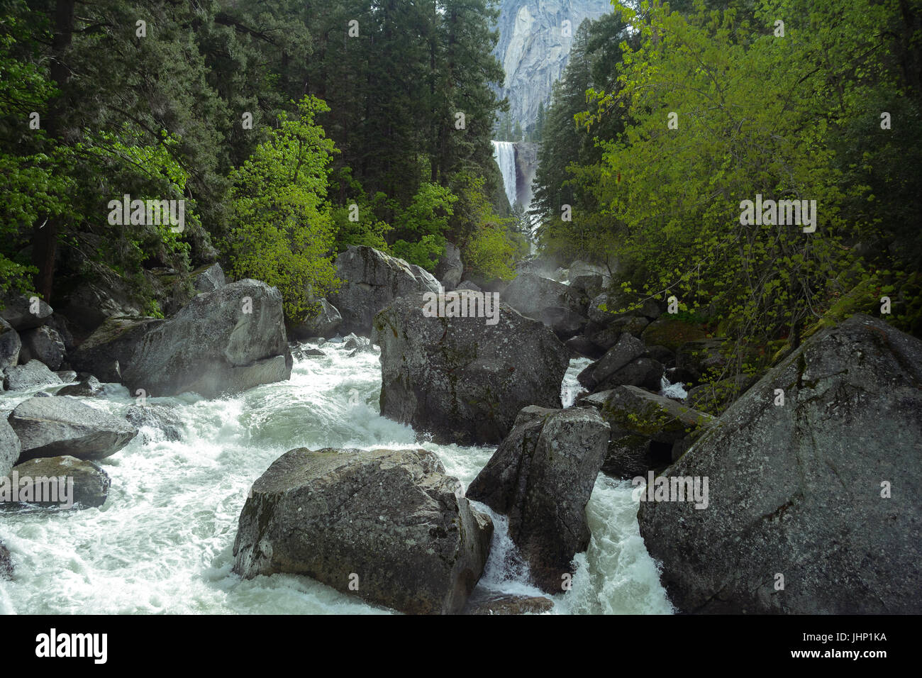 Rushing river and forest with Vernal Falls in the background at Yosemite National Park - photography by Paul Toillion Stock Photo