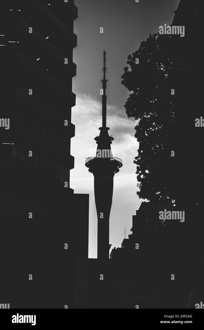 Sky Tower, Auckland, New Zealand - Stock Image