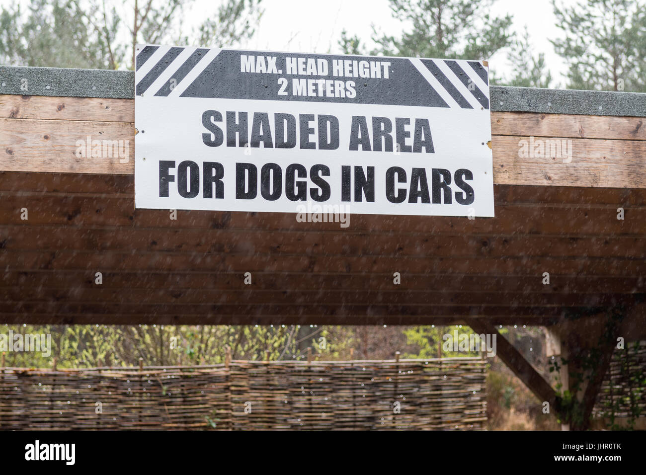 Shaded area for dogs in cars at Beinn Eighe NNR visitor centre, Kinlochewe, Scotland, UK - Stock Image
