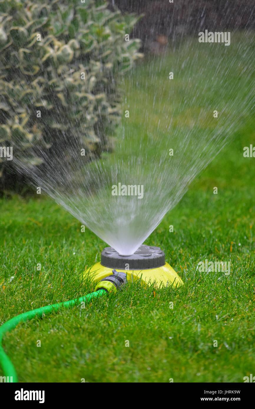 Garden Sprinkler And Hose Stock Photo Alamy