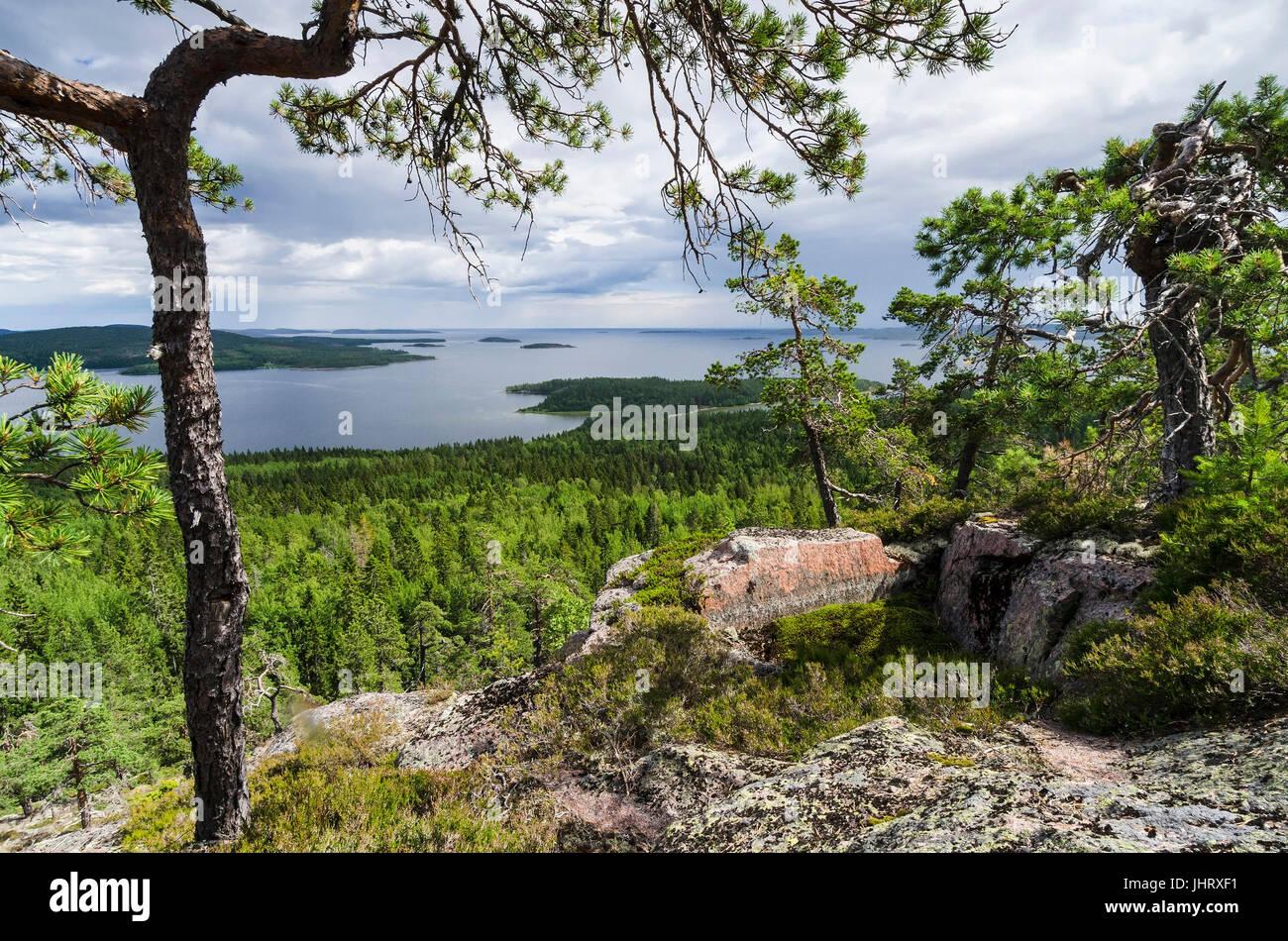 Scenery in the Gulf of Bothnia in the Skuleskogen national park, world nature heir Hoega Kusten, Vaesternorrland, - Stock Image