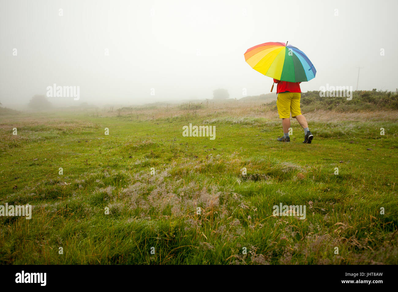 A person walking through a rural field holding a multicoloured umbrella for protection against the rain on Halkyn - Stock Image