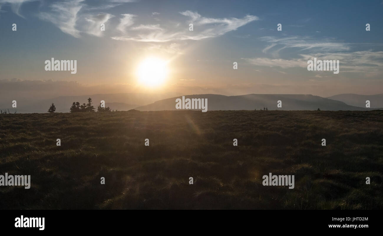 evening mountain meadow with isolated trees on Jeleni hrbet hill in Jeseniky mountains in Czech republic with hills Stock Photo
