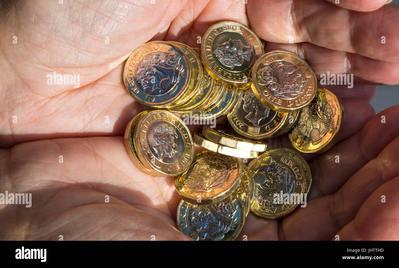 hand full of new one pound coins stock photo 148678249 alamy