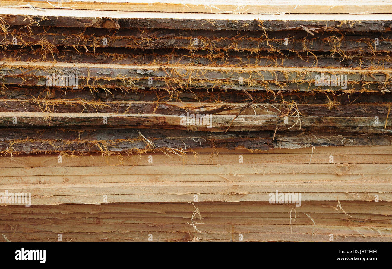 rough cut timber planks with bark edges piled in a stack - Stock Image