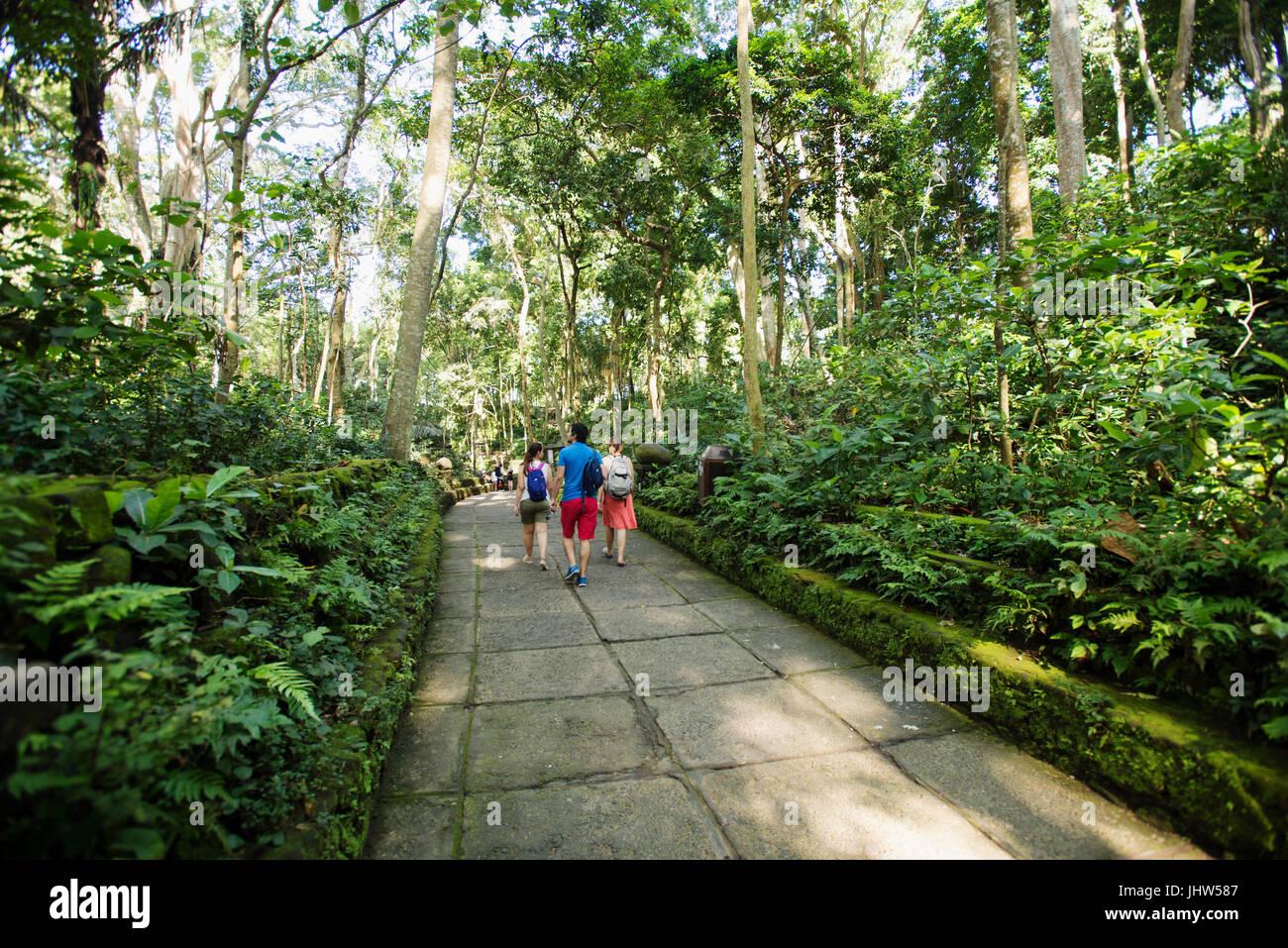 Hindu temple, Pura Dalem Agung, Monkey Forest, Ubud, Bali, Indonesia - Stock Image