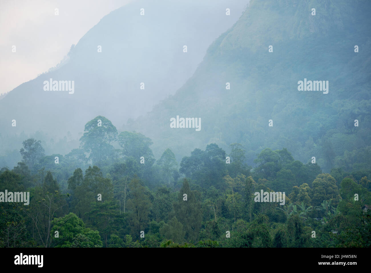 Cloud forest in Mount Bromo Java Indonesia. - Stock Image