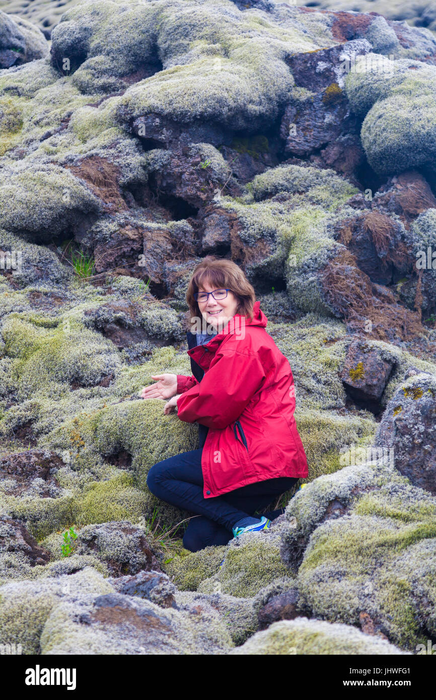Female tourist amazed at the thickness of moss growing on the Eldhraun Lava Field in Iceland - Stock Image