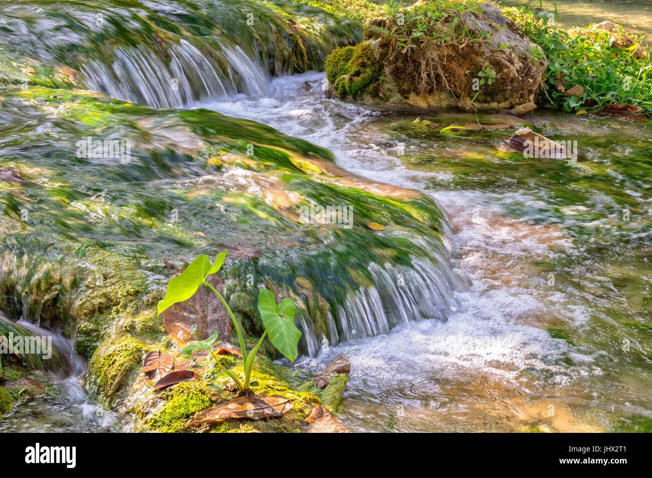 Crystal clear water of Mele Creek - Port Vila, Efate Island, Vanuatu - Stock Image