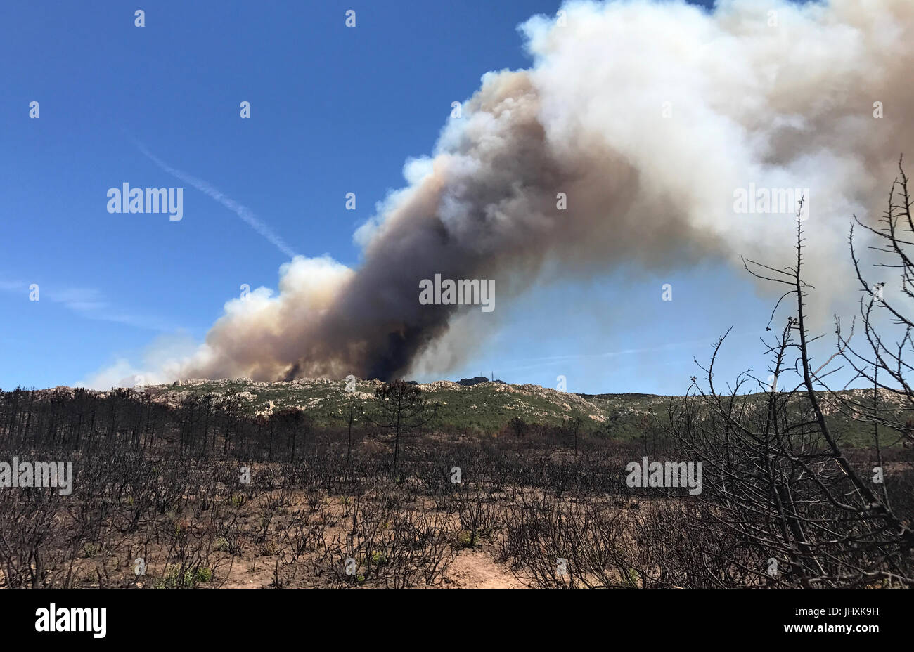 Corsica, France. 17th July, 2017. Clouds of smoke from a forest fire rise ahead of burned shrubs, a few kilometres Stock Photo