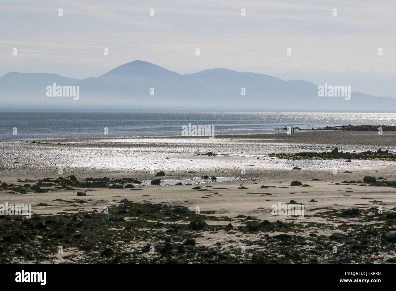 A heat haze hangs over newcastle at the foot of the Mourne Mountians on a hot summer's day. The view is across - Stock Image