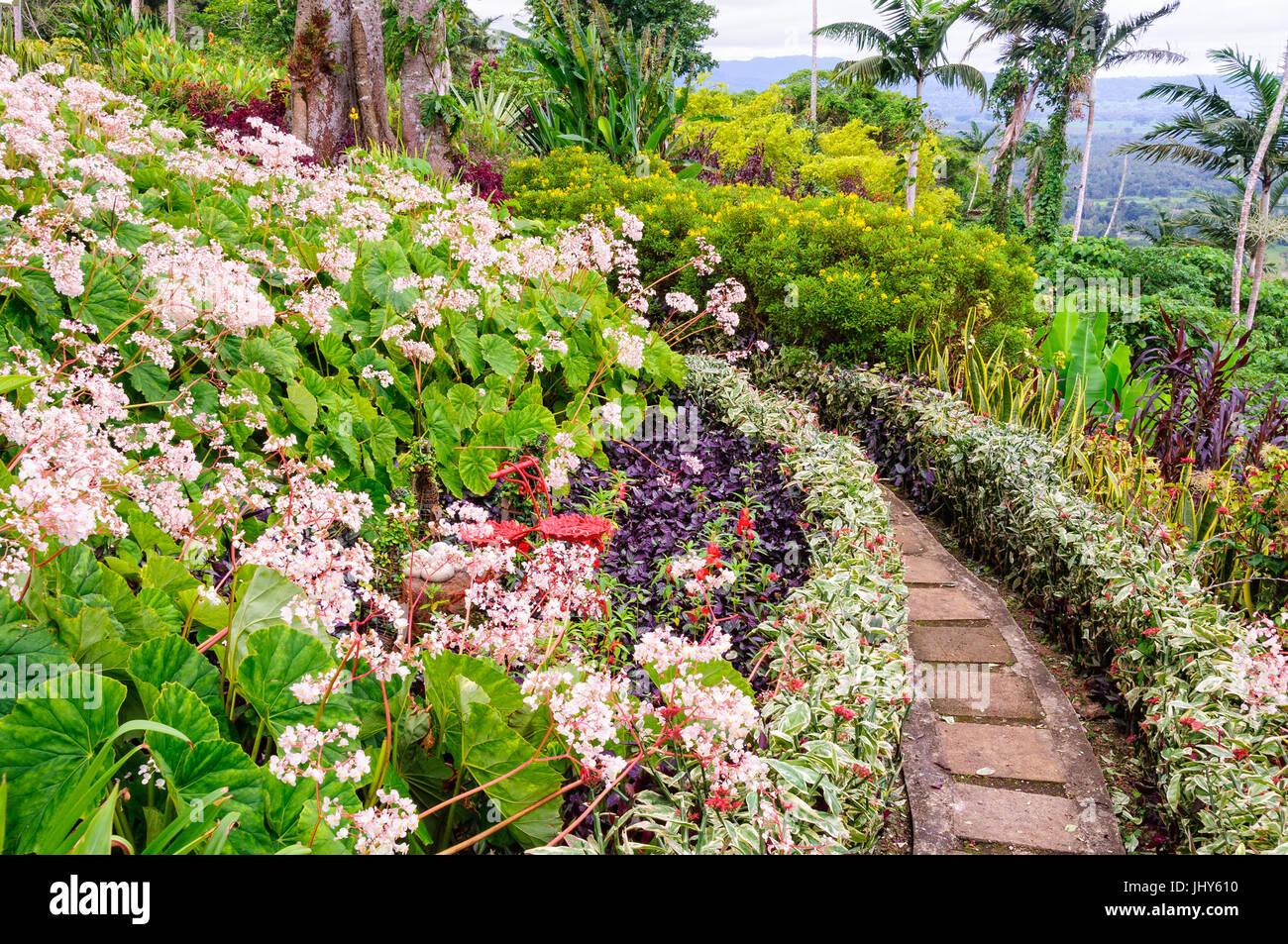Little path between the flower beds in The Summit Gardens - Port Vila, Efate Island, Vanuatu - Stock Image