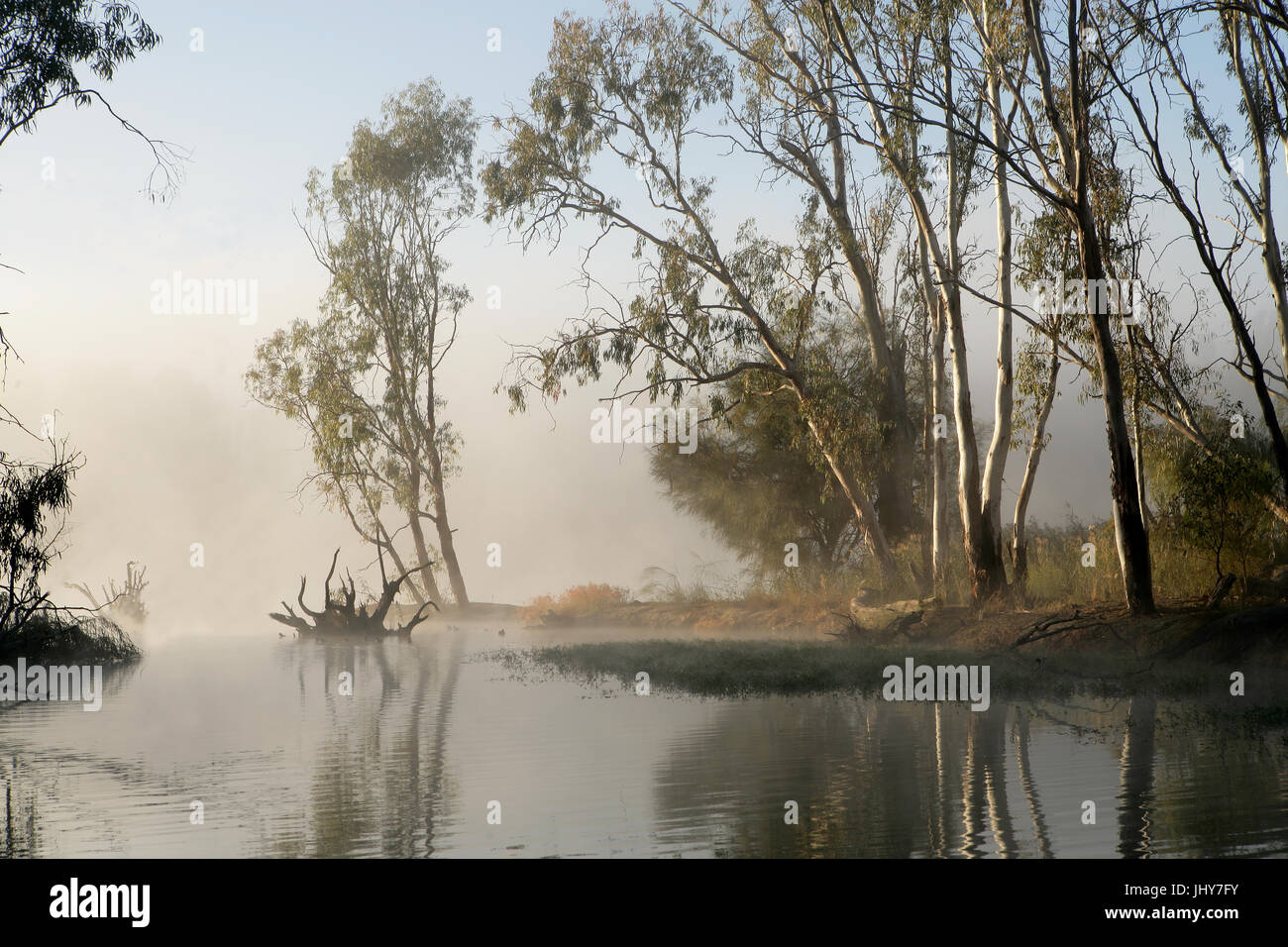 Early morning on the River Murray near Mildura - Stock Image