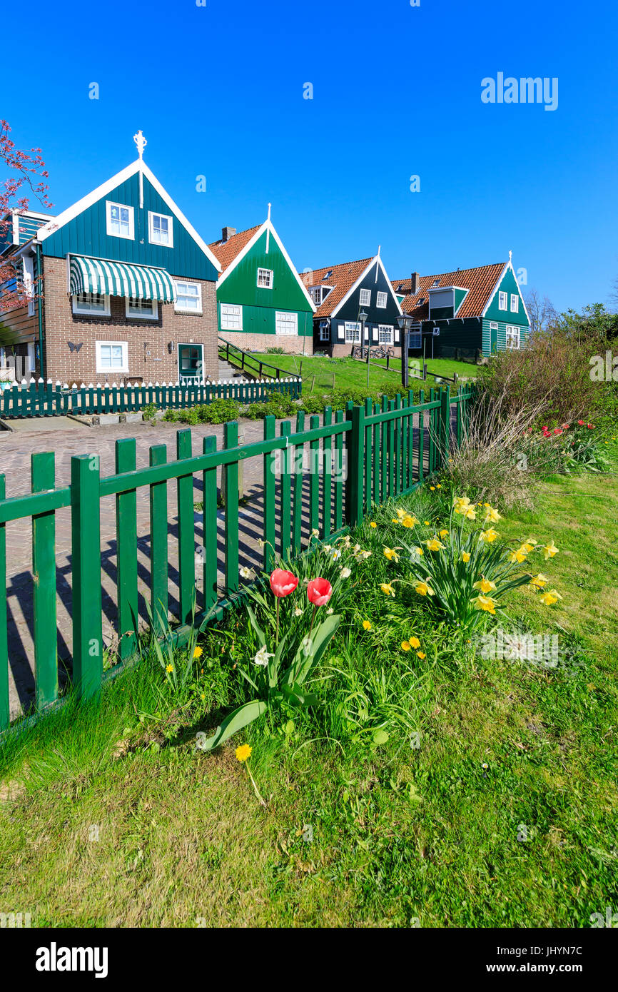Typical wooden houses framed by meadows and flowers in the village of Marken, Waterland, North Holland, The Netherlands, Stock Photo
