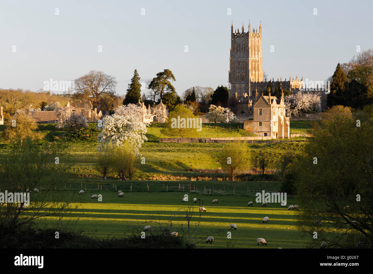 St James Church and grazing sheep, Chipping Campden, Cotswolds, Gloucestershire, England, United Kingdom, Europe - Stock Image