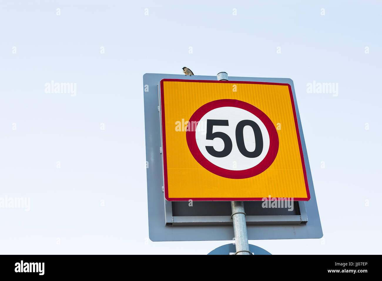 Road sign speed limit to 50, traffic sign. Stock Photo