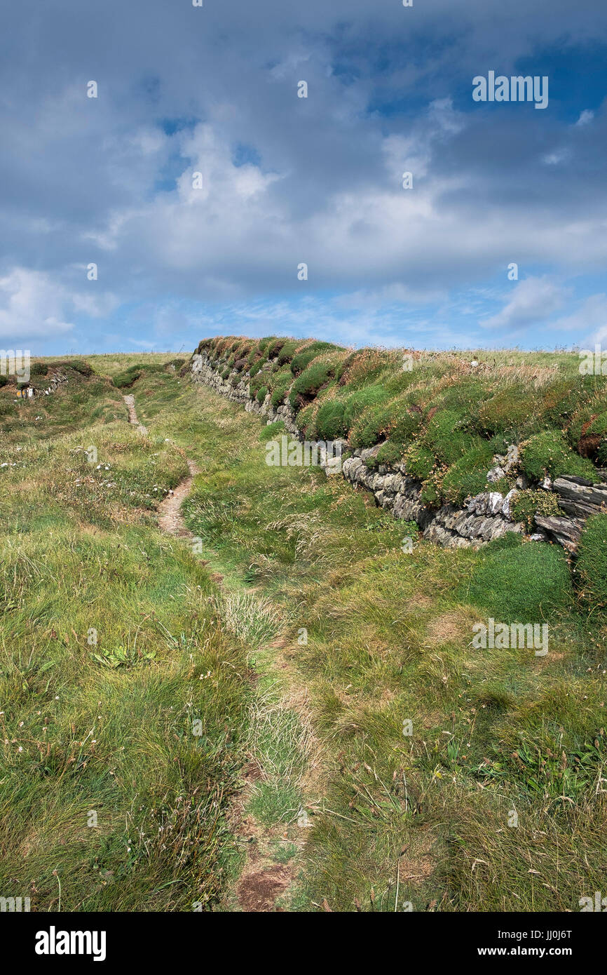 A footpath next to a traditional Cornish Hedge. - Stock Image