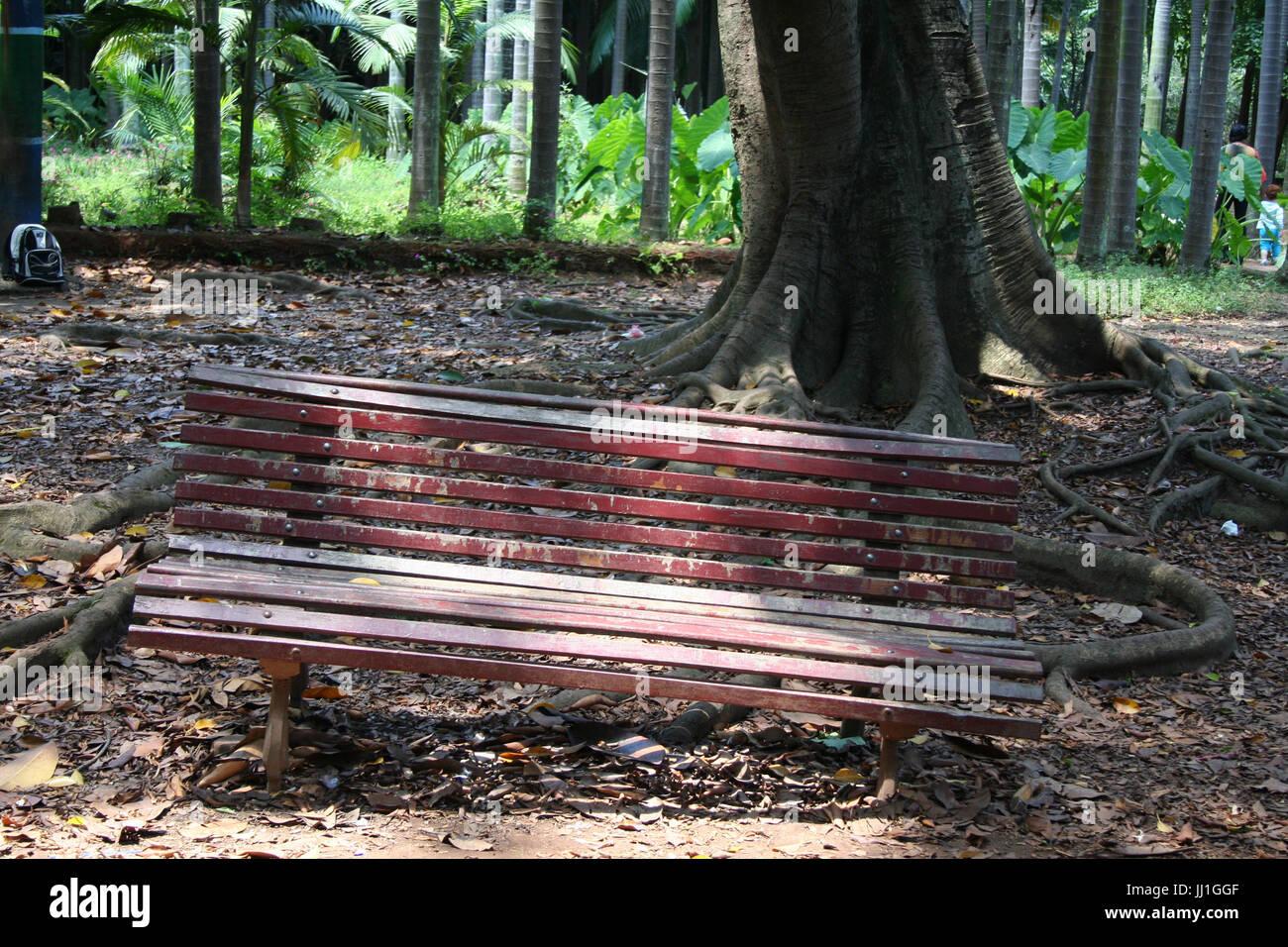 broken wood seat, Agua Branca park, São Paulo, Brasil. - Stock Image