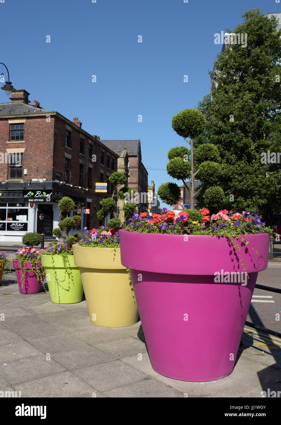 Giant flowerpots with floral displays in bury lancashire stock image