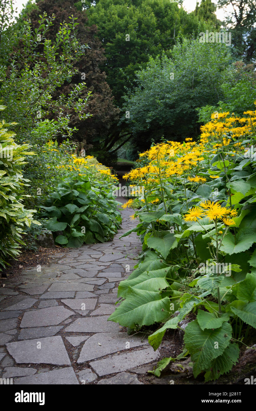 A Walk through the flowers along a stone path - Stock Image