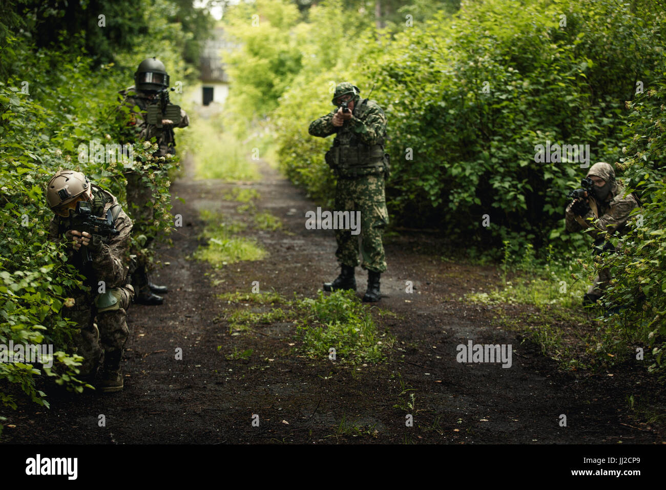 Photo of soldiers in woods - Stock Image