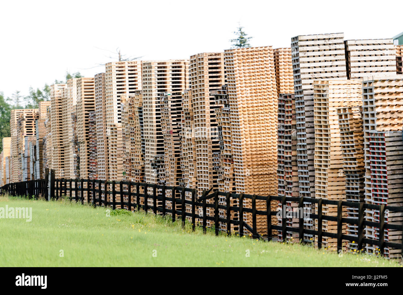 Wooden pallets piled up high at a pallet factory in Ireland. - Stock Image