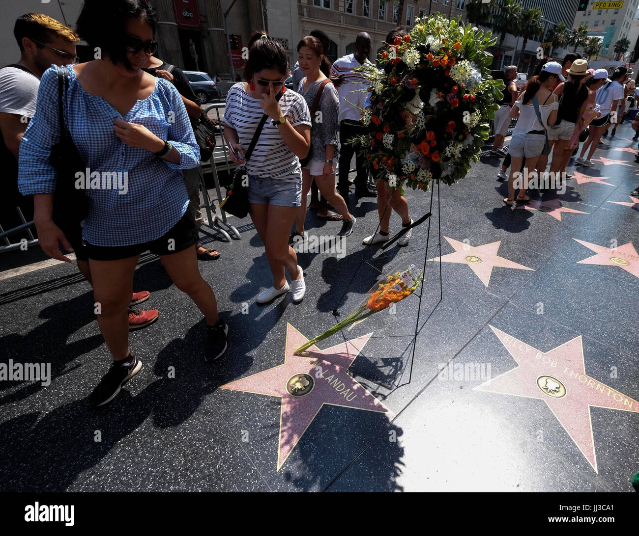 Los Angeles, Saturday, USA. 15th July, 2017. Flowers in memory of actor Martin Landau are placed on his star on - Stock Image