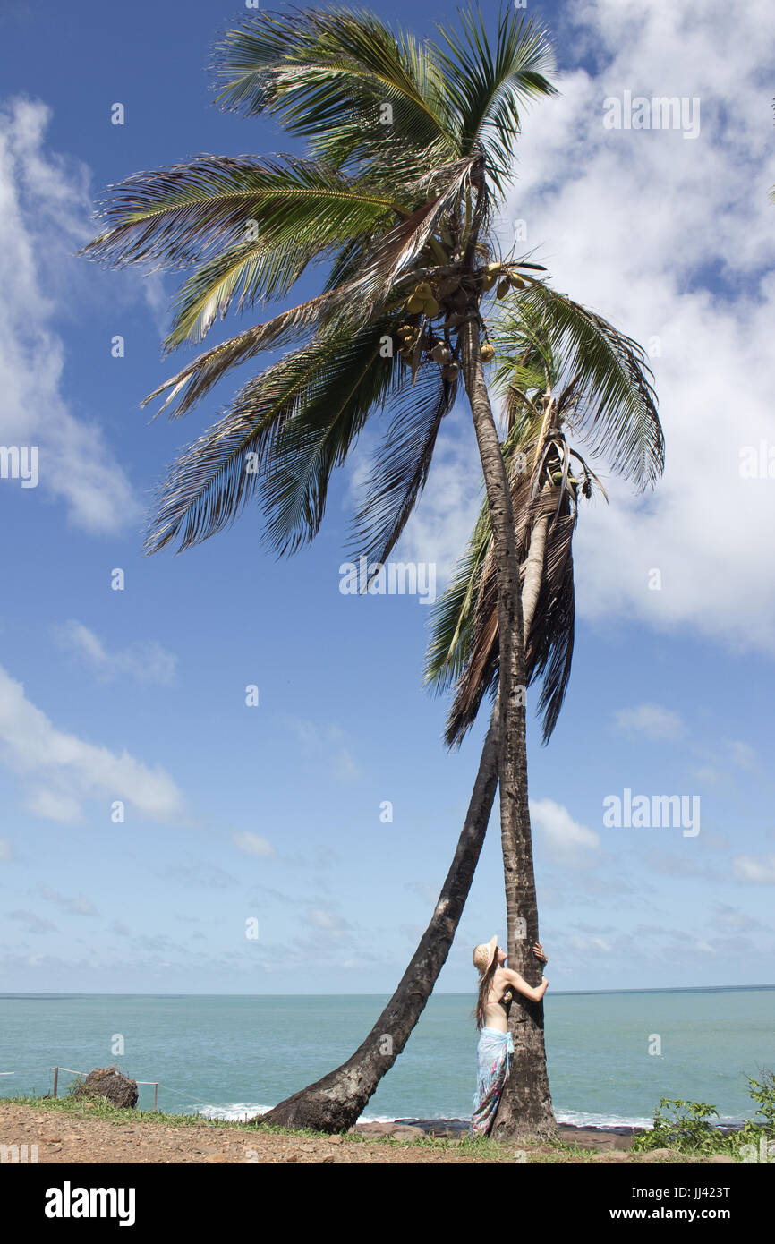 A woman hugging a tall palm tree on the coast of Royale island (Salvation's islands, French Guiana) - Stock Image