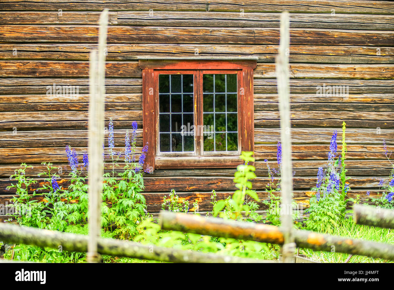 Old traditional residential wooden house with beautiful red window and garden flowers located at Leksands Homestead Stock Photo