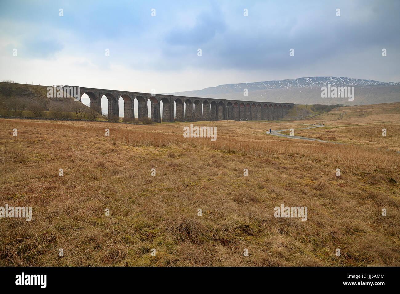 Ribblehead Viaduct leading Path - Stock Image