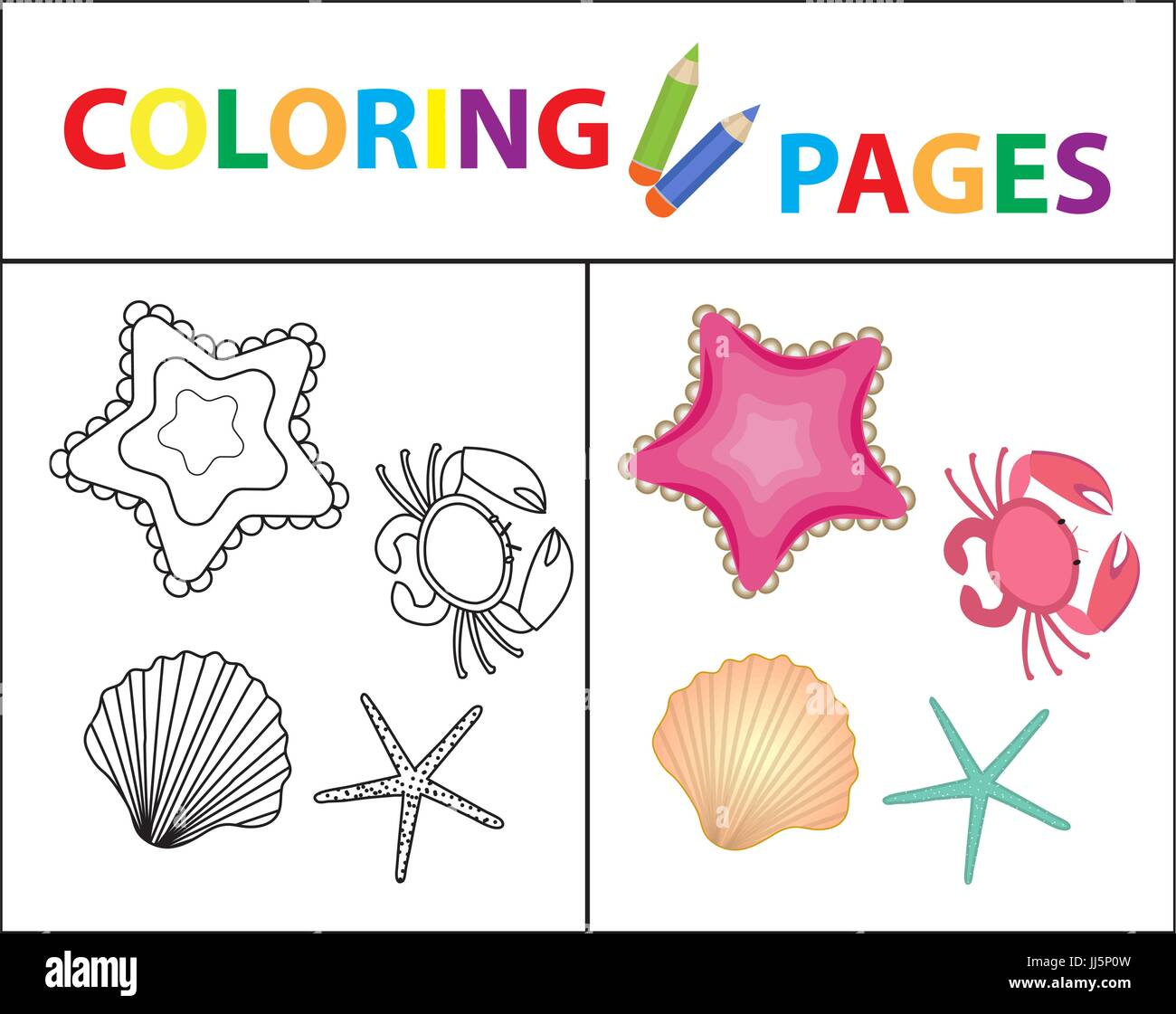 Coloring Book Page Sea Set Star Shell Crab Pearl Sketch Outline And Color Version For Kids Childrens Education Vector Illustration