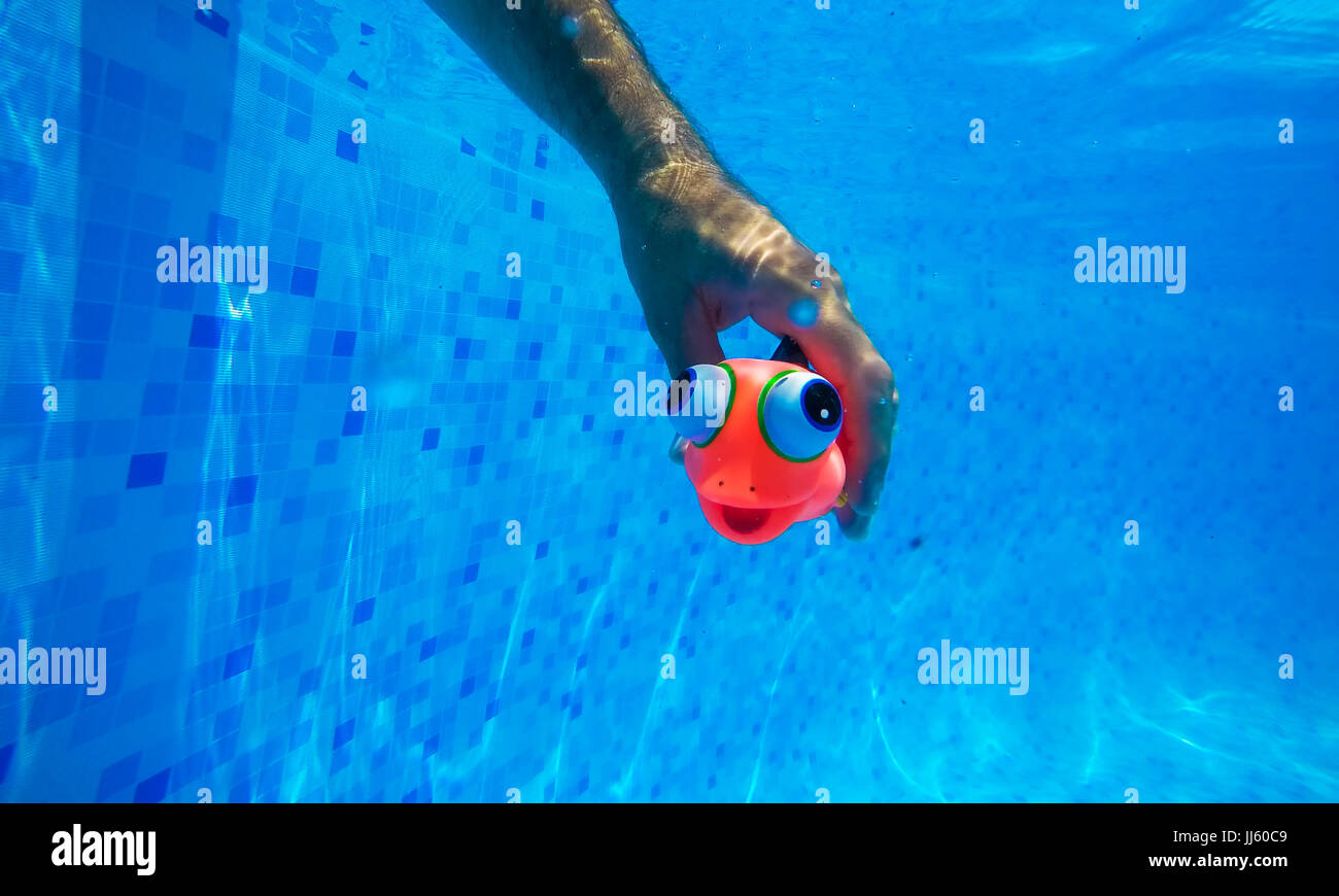 Man playing with generic rubber fish toy in swimming pool ...