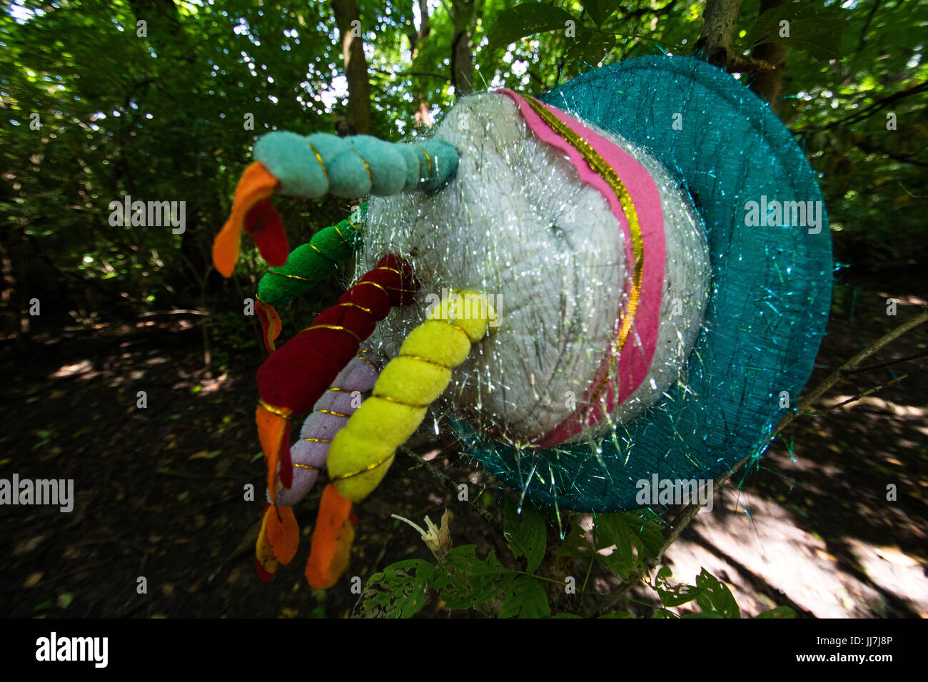 party hat found in woods - Stock Image