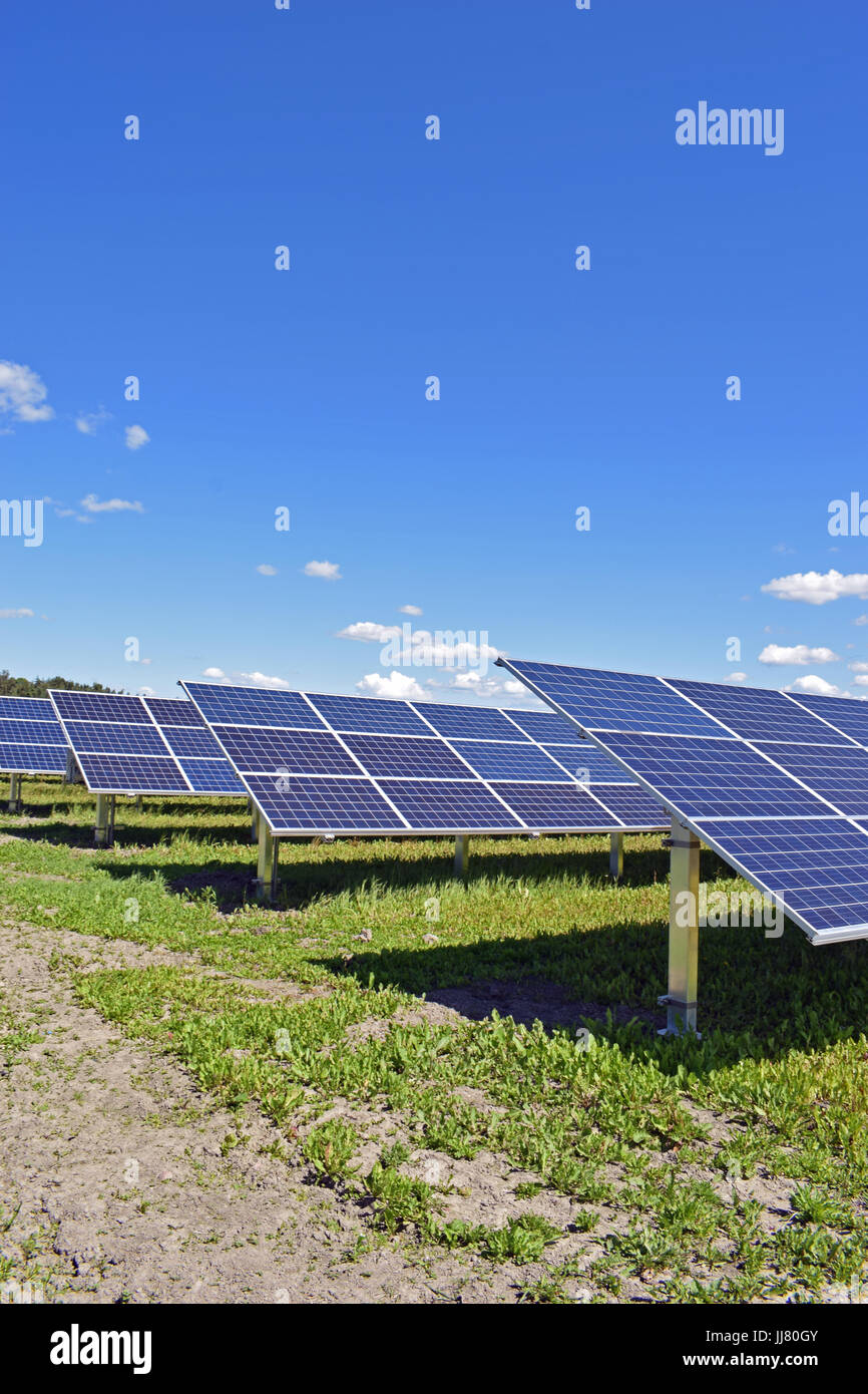 Solar panels on field. Clear sky with a few small clouds on background. Vertical image. - Stock Image