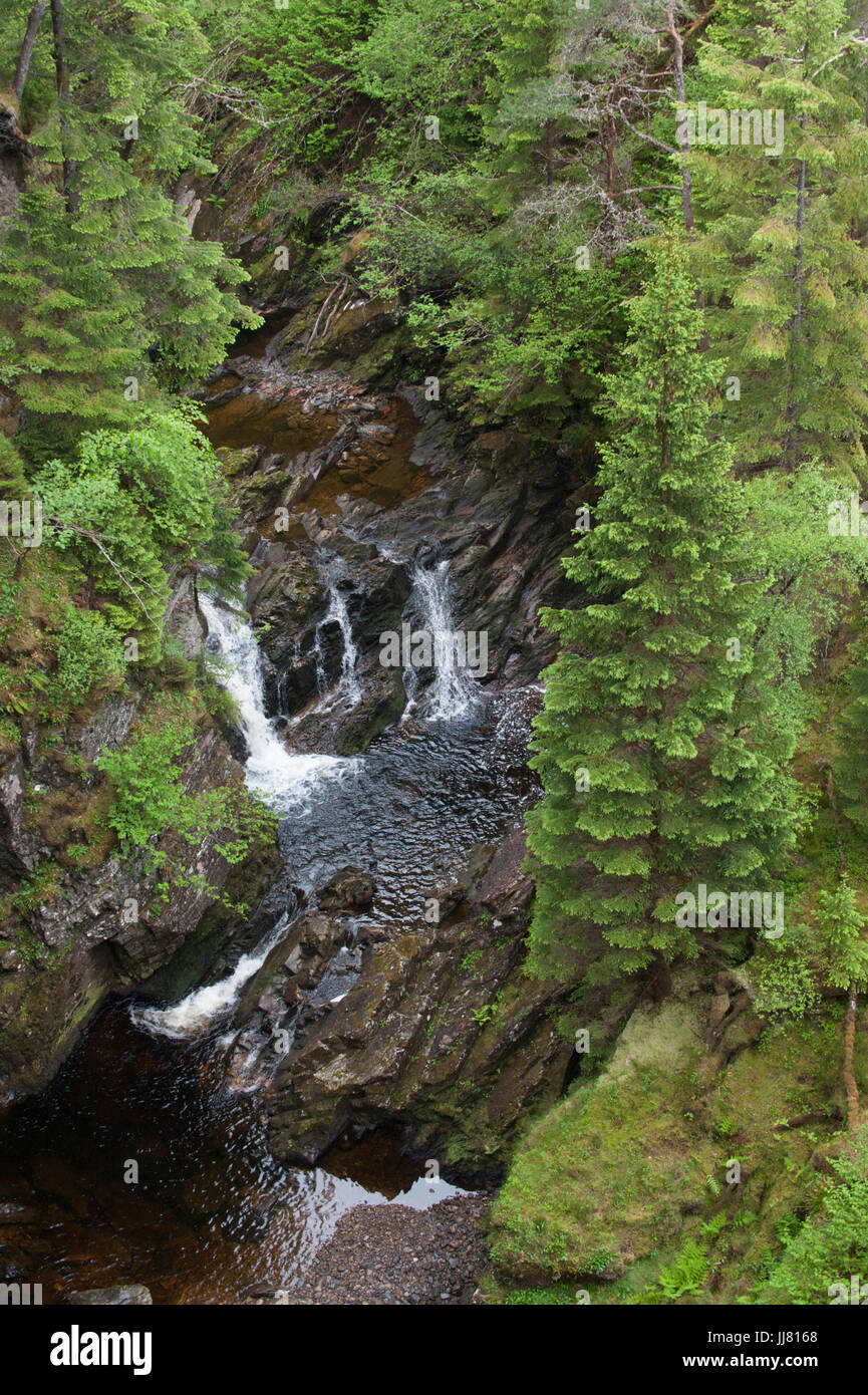 Plodda Falls, Glen Affric, Inverness-shire, Scottish Highlands - Stock Image