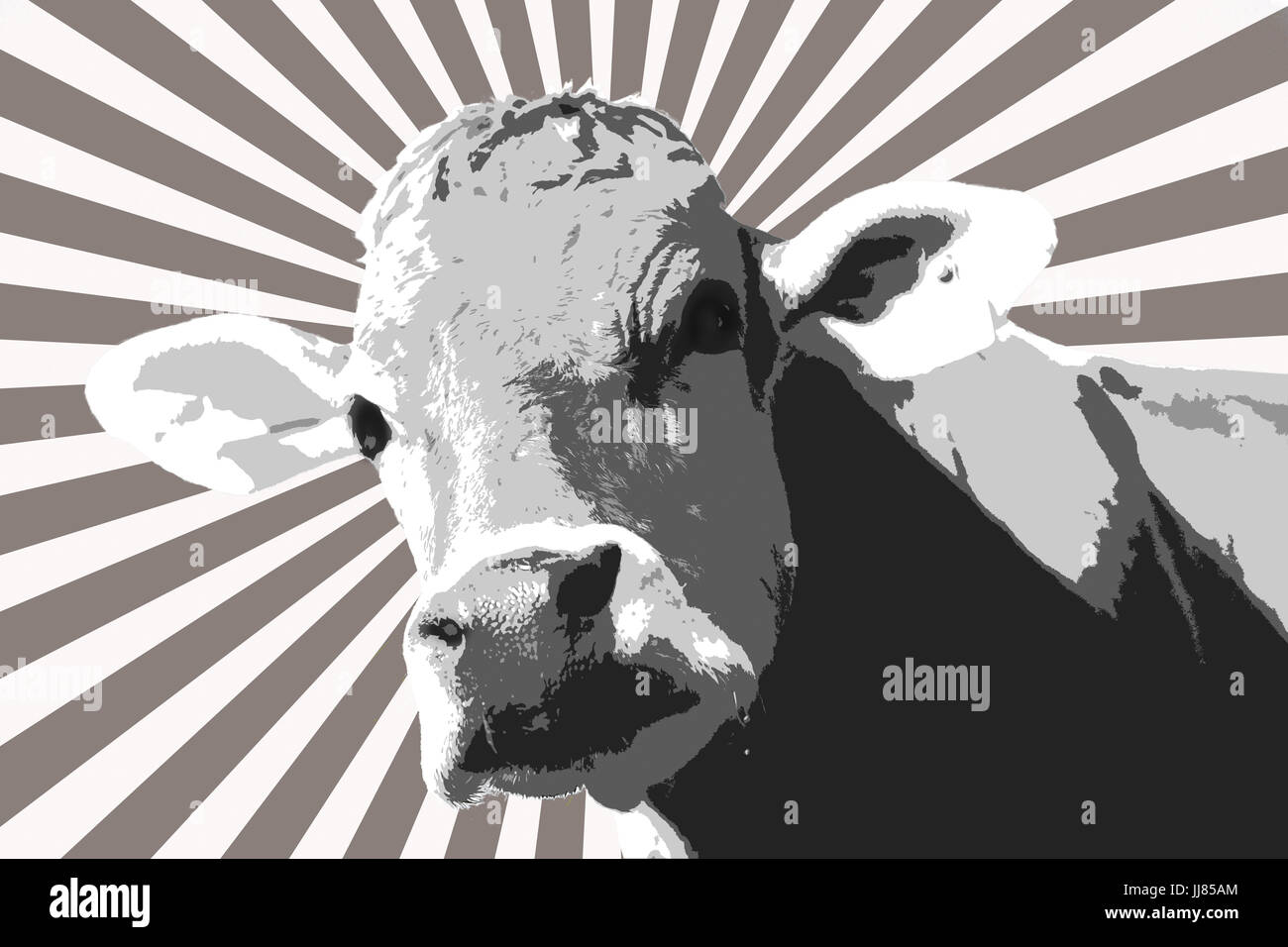 Europe, Switzerland,  St. Gallen, Digitally processed curious cow abstract artful ,neugierige Kuh abstrakt kunstvoll - Stock Image