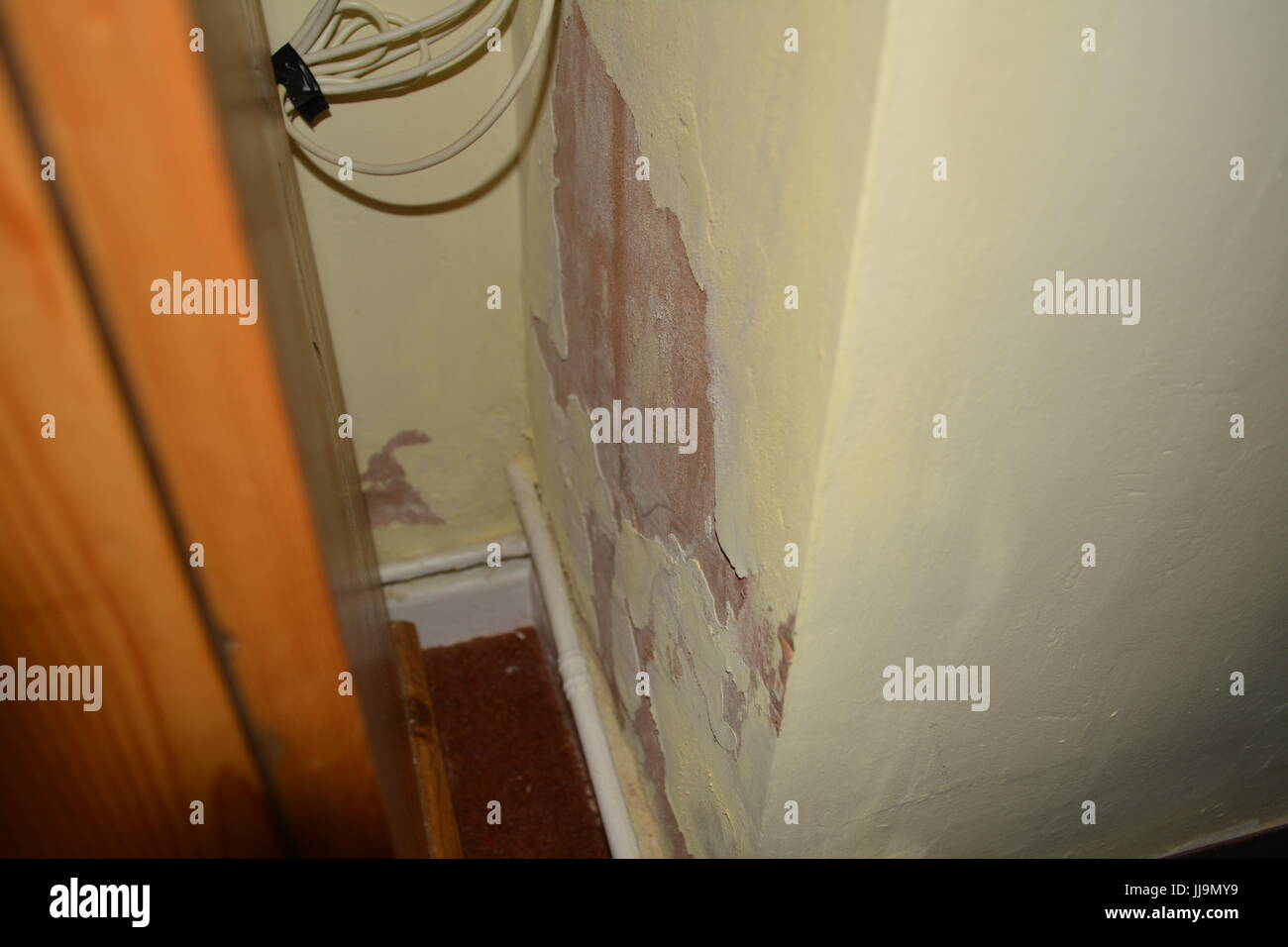 Rising damp on inside wall of old house re peeling paint poor decoration DPC DPM damp proof course membrane lack - Stock Image