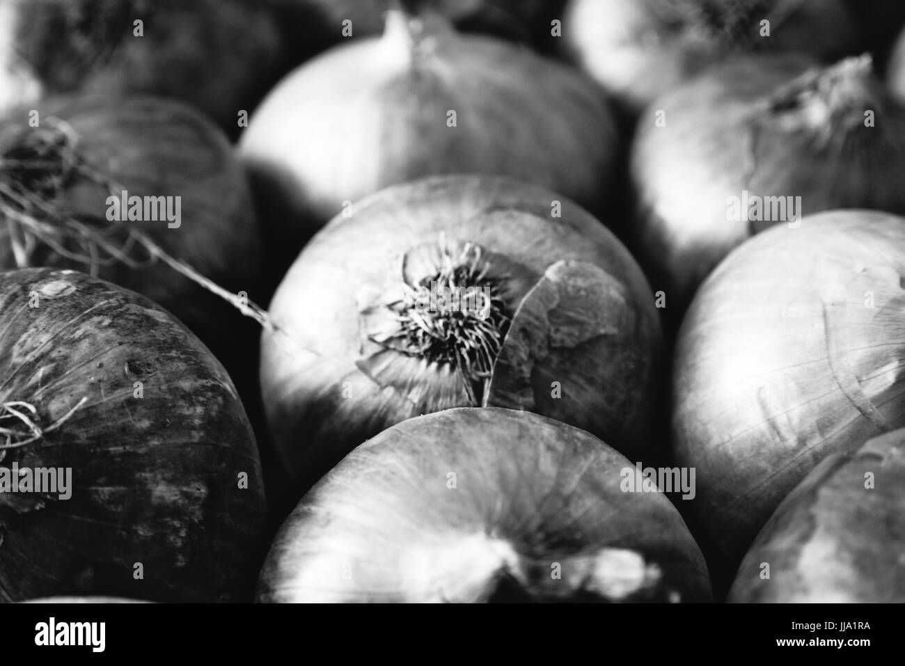 Fresh onions on display at a nearby market. - Stock Image