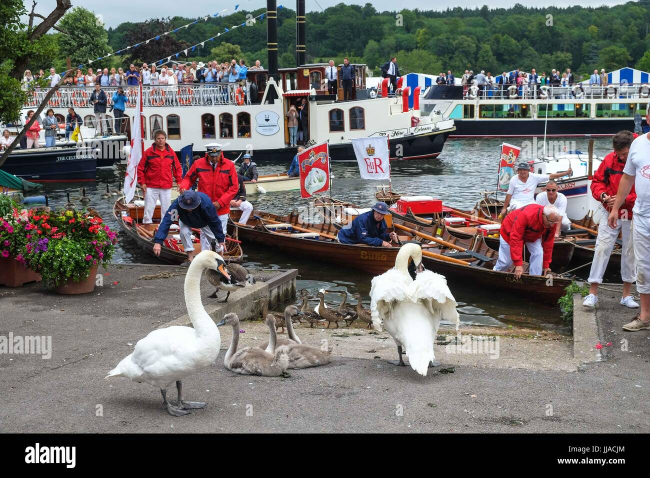 Henley on Thames, UK 19th July 2017. The Queens Swan Uppers arrive at Henley on Thames on the third day of the swan - Stock Image