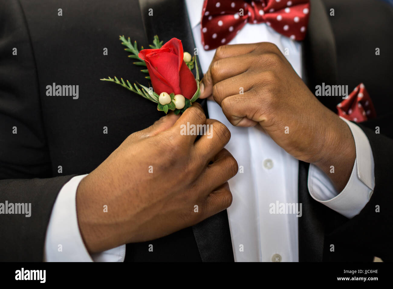 Teen pins his rose boutonniere to formal suit getting dressed and ready for prom. - Stock Image